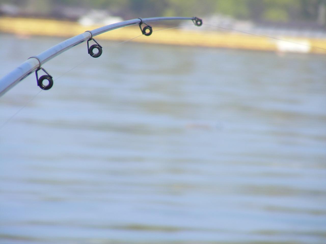 サビキ釣りは楽しい fun-jiggle-fishing
