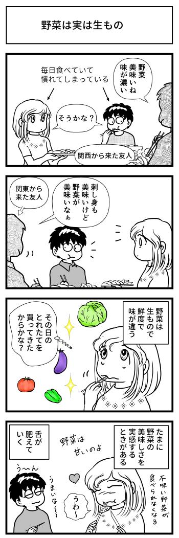 新鮮 野菜 高知 四国 マンガ とさくら 野菜の甘み
