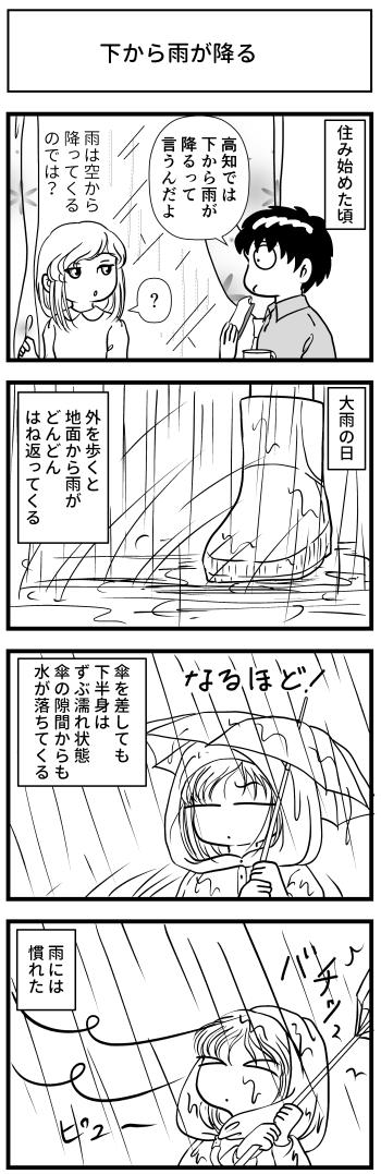マンガ とさくら 高知 ブログ 雨