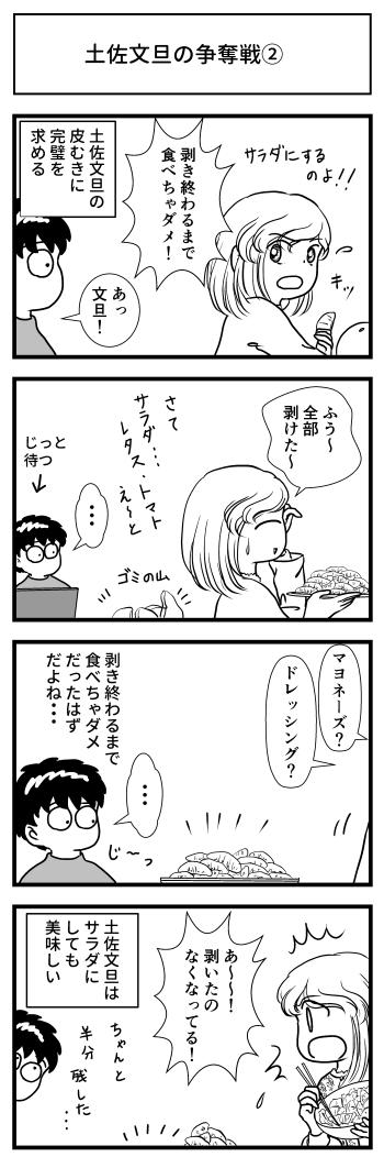 土佐文旦 tosa-pomelo 争奪戦 高知 とさくら マンガ ブログ