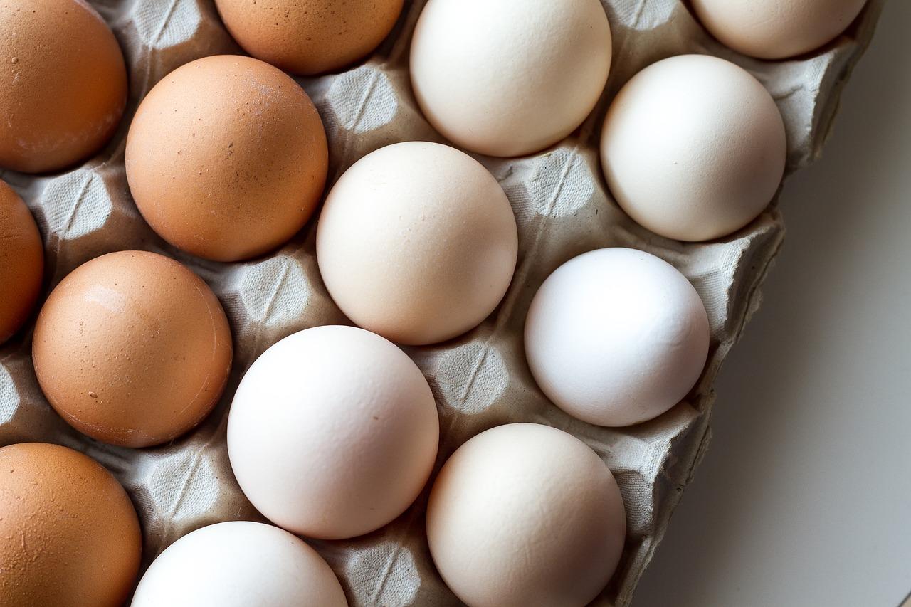 スポンジケーキ 卵 泡立て方 作り方 焼き方 とさくら 高知 ブログ