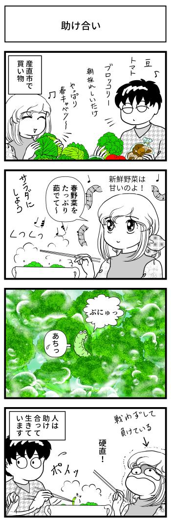 ブロッコリー 春野菜 幼虫 虫 マンガ とさくら Tosakura ブログ 高知 助け合い 料理