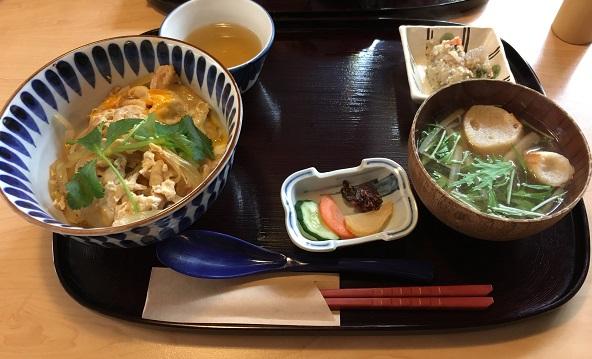 土佐茶 土佐茶カフェ 帯屋町 食事 ランチ 御飯 お店 四万十鶏 親子丼 高知