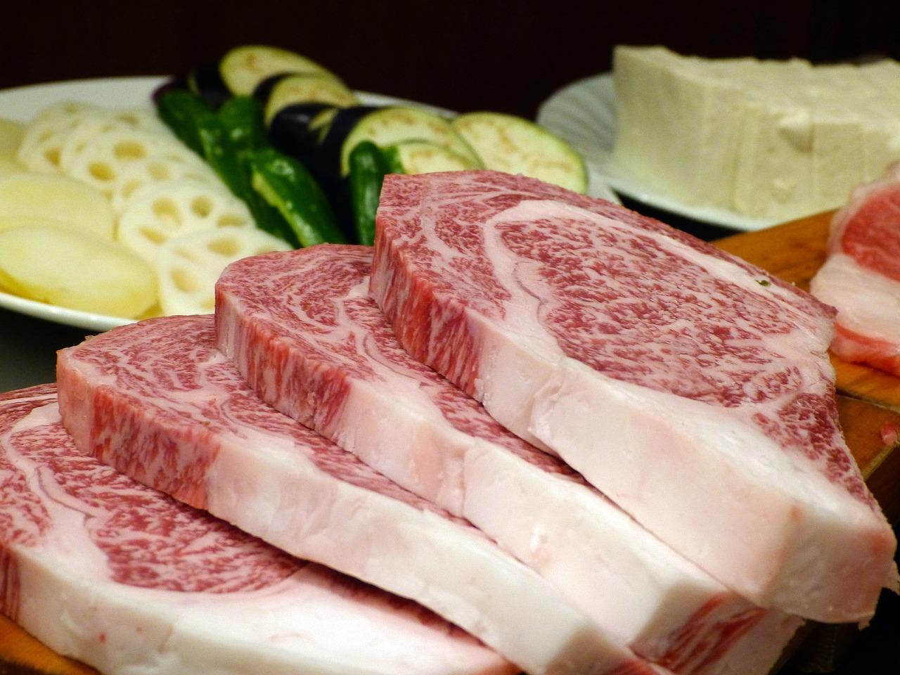 脂質制限 コレステロール インスリン インスリン抵抗性 脂肪 脂質 糖質制限 糖質制限ダイエット ダイエット 炭水化物ダイエット 痩せる 太った 糖質 脂質異常症 高脂血症 コレステロール マンガ とさくら とさくらマンガブログ ブログ Tosakura 高知