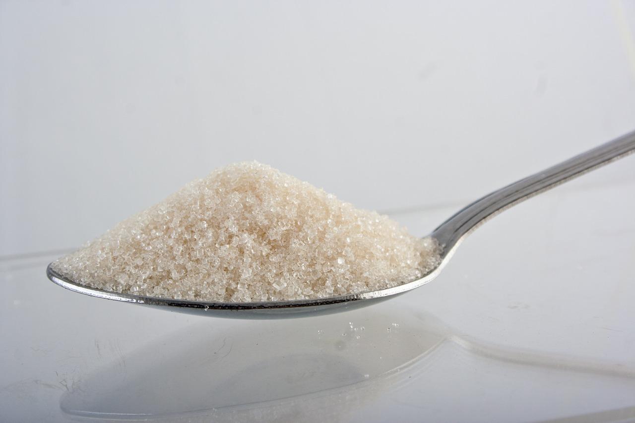 脂質 脂質制限  糖質制限 糖質制限ダイエット ダイエット 炭水化物ダイエット 痩せる 太った 糖質 脂質異常症 高脂血症 コレステロール 肥満