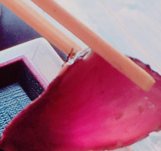 足摺テルメ 足摺岬 土佐清水市 ホテル 南国リゾート 旅行 宿 食事 旅 ラウンジ ディナー 刺し身 ハガツオ グレ 歯鰹 目鯛 デザート モーニング 太平洋 皿鉢料理 とさくら とさくらマンガブログ ブログ Tosakura 高知
