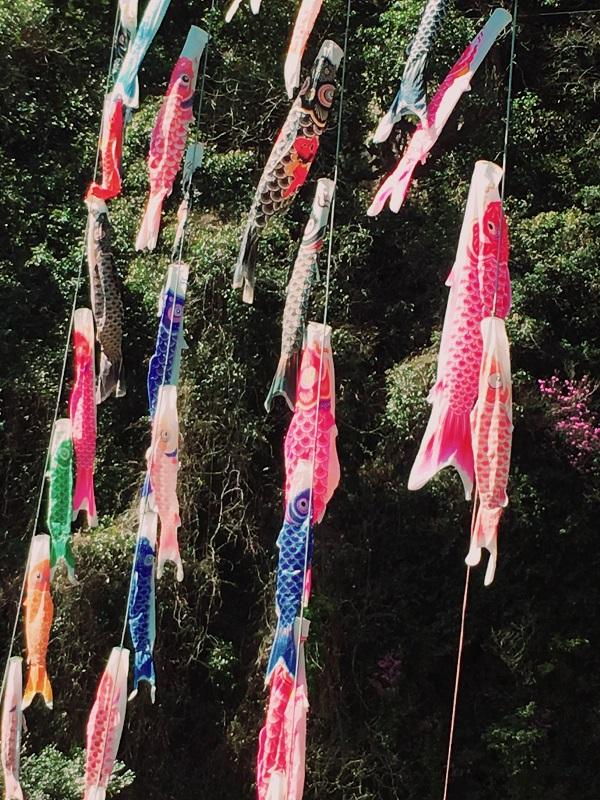 ゆの森 温泉 鯉のぼり こいのぼり 川 中津渓谷 マンガ とさくら とさくらマンガブログ ブログ Tosakura 高知 端午の節句